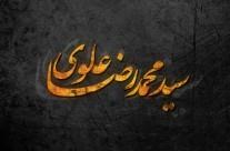 حفاظت شده: محمد رضا علوی