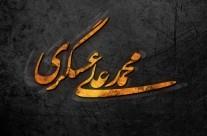 حفاظت شده: محمد علی عسگری