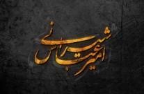 حفاظت شده: امیر عباس شیرانی